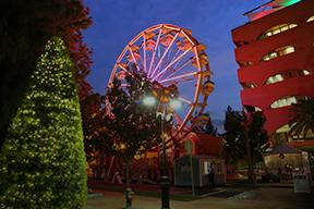 Festival Of Lights Riverside 2020.Festival Of Lights Riverside 2020 Festival 2020