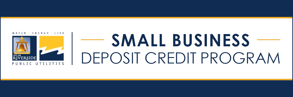 Small Business Deposit Credit (SBDC)