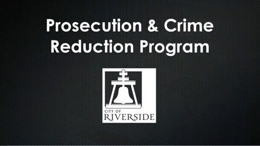 Community Prosecutor Video Screenshot